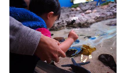 冲绳必去景点推荐「美丽海水族馆」里的小朋友玩乐照片