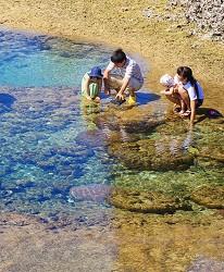 沖繩旅遊孝親自由行推薦必住飯店「RENAISSANCE RESORT 沖繩」的海岸