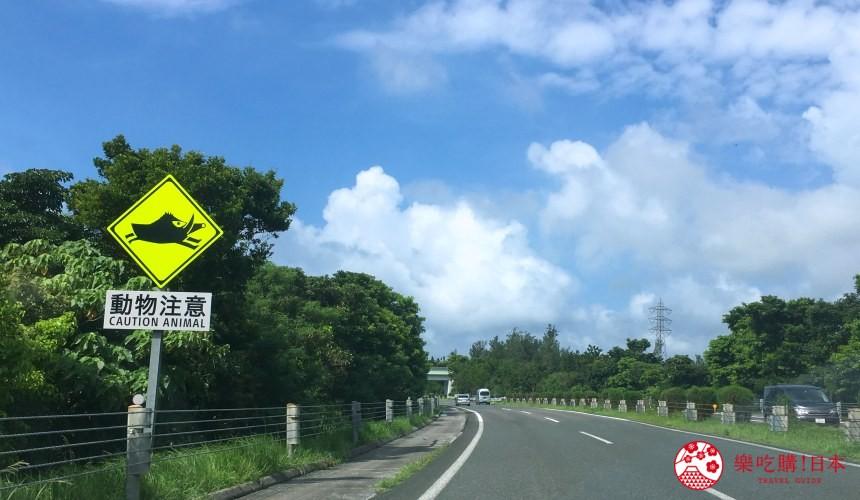 冲绳自驾游租车攻略介绍冲绳高速公路山猪注意的标志