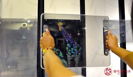 沖繩旅遊親子必去動物園「沖繩兒童王國」的 WONDER MUSEUM 神奇博物館的神奇透明板