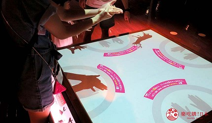 沖繩旅遊親子必去動物園「沖繩兒童王國」的 WONDER MUSEUM 神奇博物館的手影遊戲