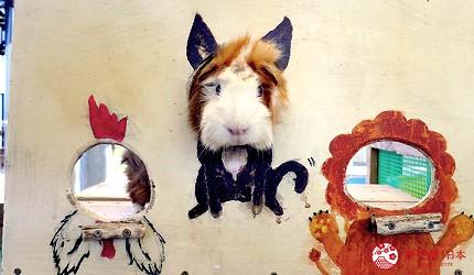 沖繩旅遊親子必去動物園「沖繩兒童王國」的天竺鼠拍照背板