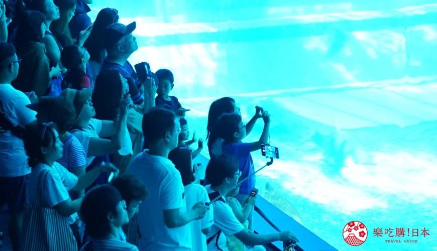 冲绳必去景点推荐「美丽海水族馆」的室内照片小朋友一景