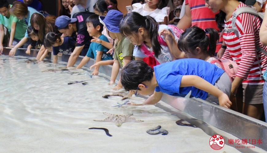 冲绳必去景点推荐「美丽海水族馆」里的礁池与小朋友