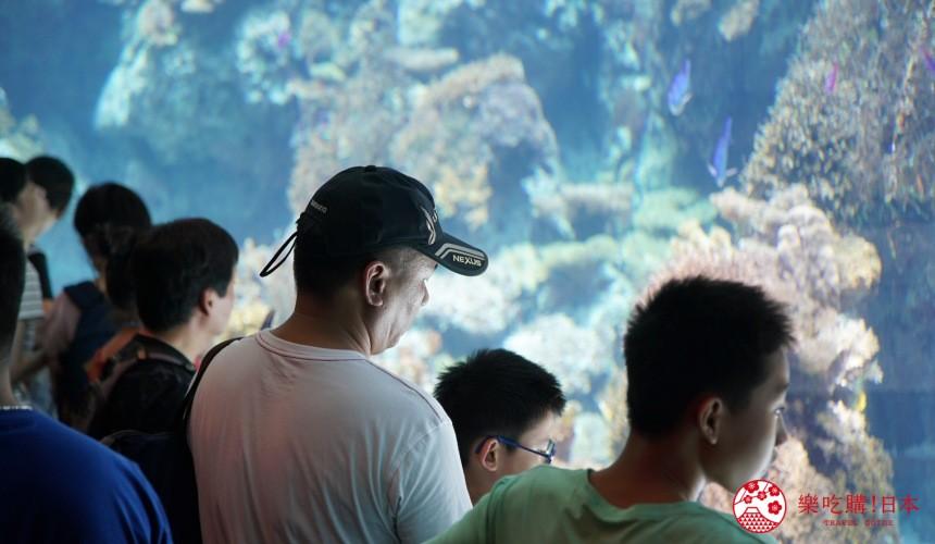 冲绳必去景点推荐「美丽海水族馆」里大人看着珊瑚礁