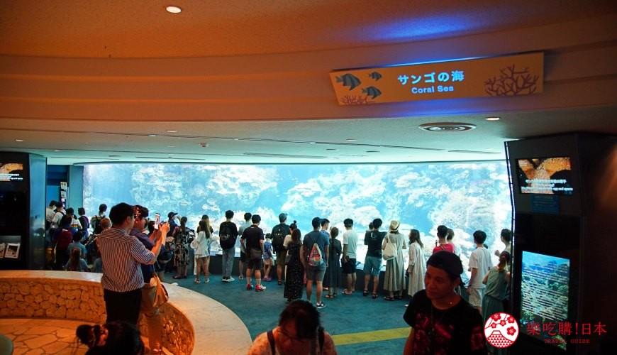 冲绳必去景点推荐「美丽海水族馆」里的珊瑚之海区域