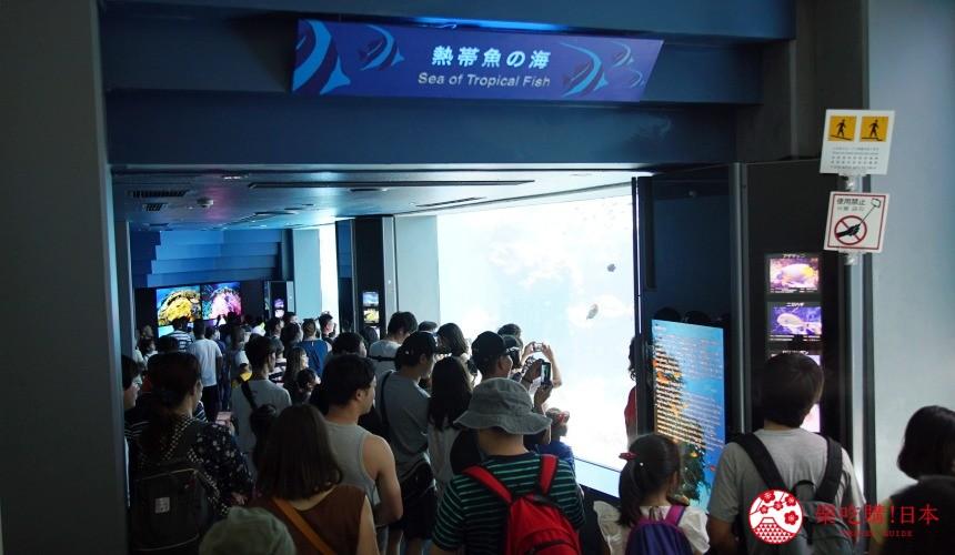 冲绳必去景点推荐「美丽海水族馆」里的热带海之海区域