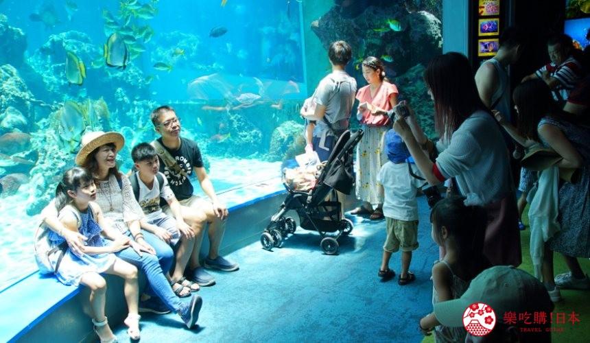 冲绳必去景点推荐「美丽海水族馆」里的热带海之海区域的窗台