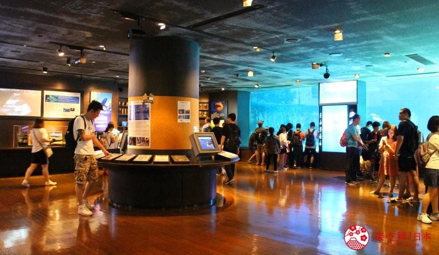 冲绳必去景点推荐「美丽海水族馆」里的鲨鱼博士展厅