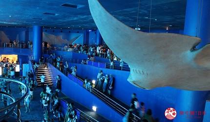 冲绳必去景点推荐「美丽海水族馆」里的黑潮之海区域的魟鱼标本